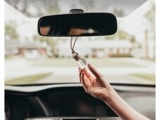 Automobilių kosmetika, oro gaivikliai